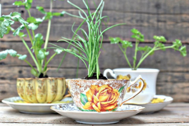 Herb-Tea-Cup-may baskets