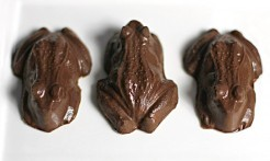 chocolate-frogs-2-570x341